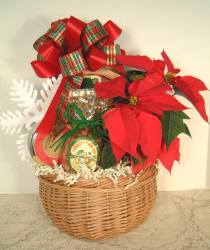 Live Poinsettia Gift Basket - Product Image